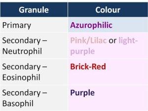Granulocyte granules