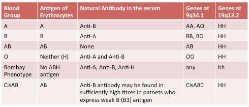 O Antibodies Bombay blood gr...