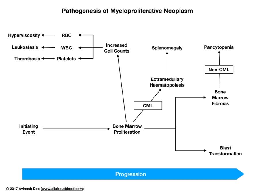 Myeloproliferative disease